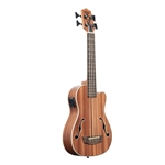 Journeyman Mahogany AC/EL UBass - Fretted with Bag